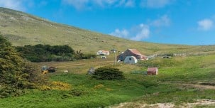 This part of your expedition cruise will let you explore remote areas in the Falklands, such as this farm on Carcass Island.