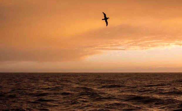 Sunset in the Drake Passage