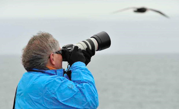 Bring your camera and capture the amazing wildlife from deck