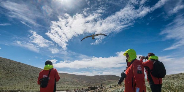 Enjoy wildlife on a landing in the Falkland Islands