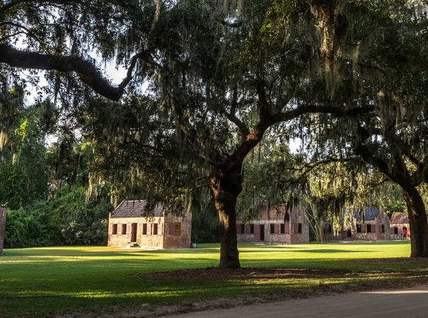 We sail further south from New York we make full-day stop in Charleston where you have the opportunity to visit Boone Hall Plantation, one of America's oldest working plantations.