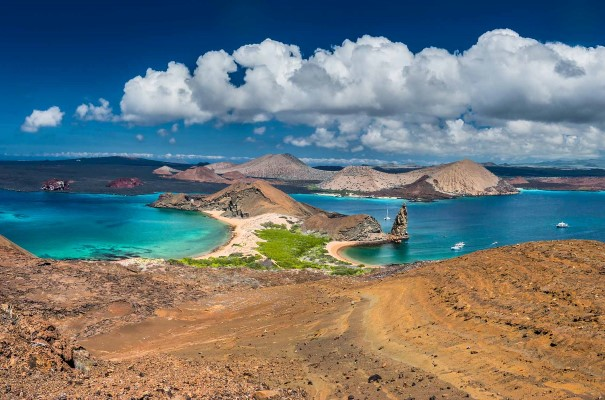 Explore the rich biodiversity of the famed Galápagos Islands.