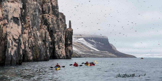 Join the expedition team and go kayaking near Alkefjellet.