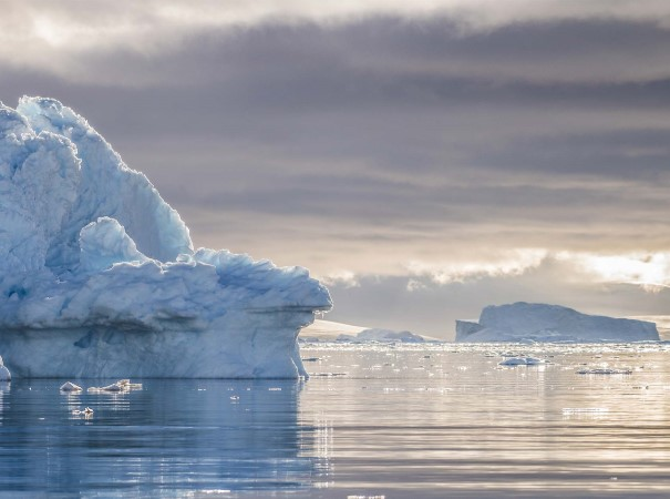 Get close to the icebergs of Neko Harbour, Antarctica, and experience the awe-inspiring frozen continent.