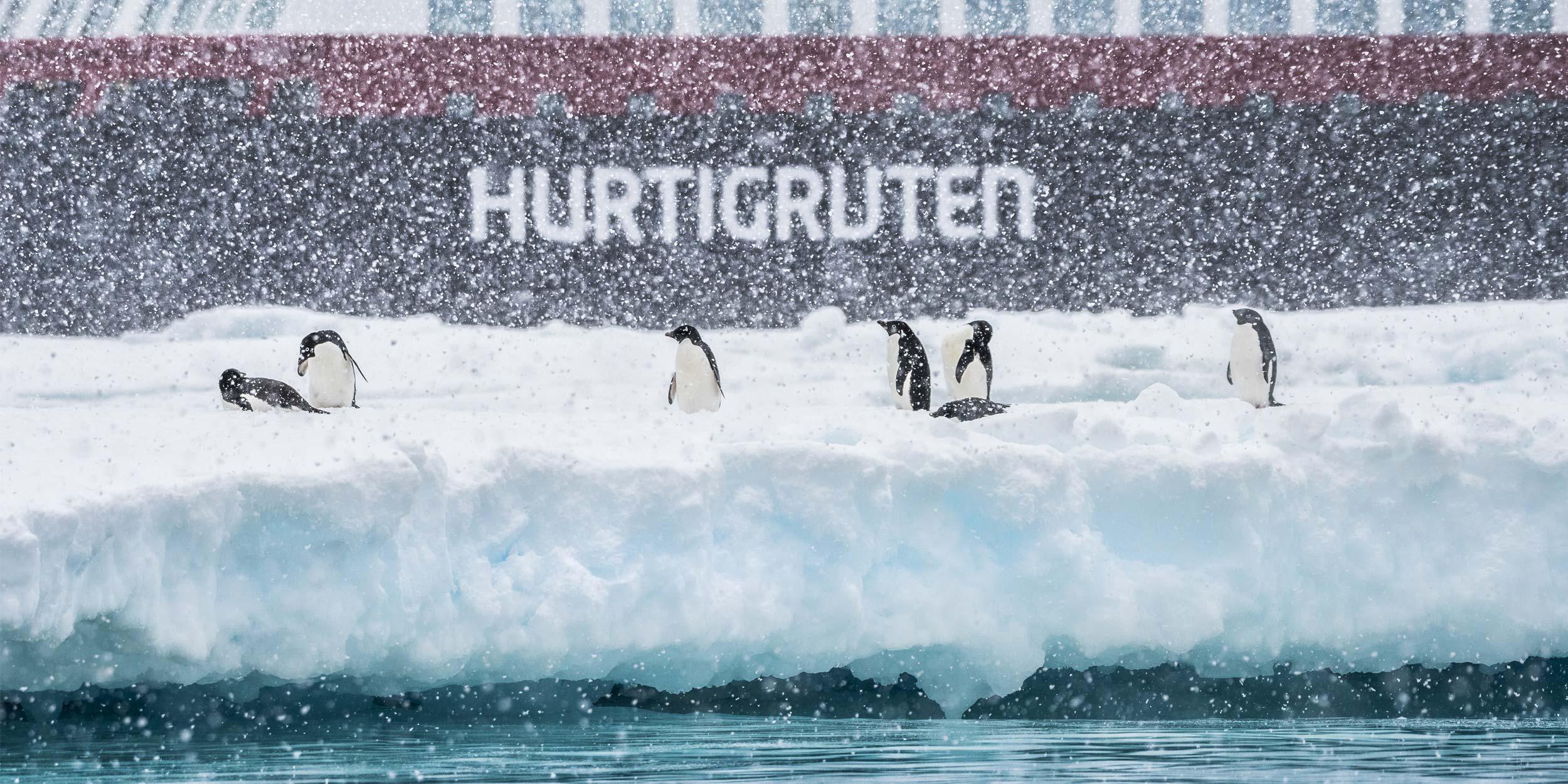 New Year 2019 in Antarctica 100