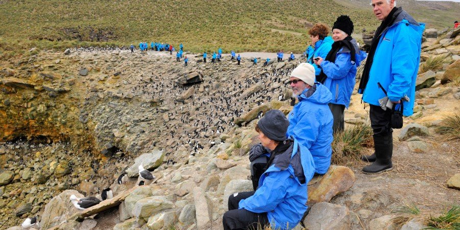 Bird watching in the Falklands.