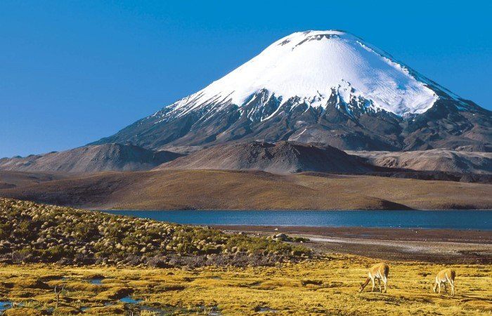 In Chile, stunning Luaca National Park is home to breathtaking scenery with snow-capped volcanoes, sparkling lakes and isolated hot springs.