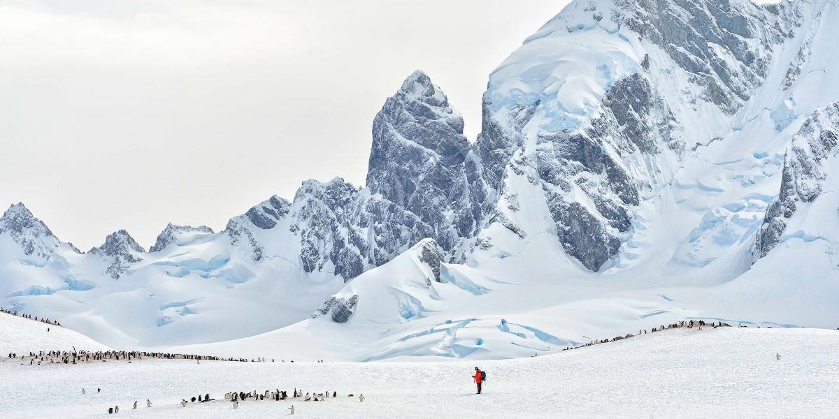 Antarctica Cruises Explore The Last Untouched Continent  Hurtigruten